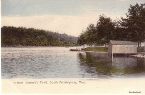 learned pond
